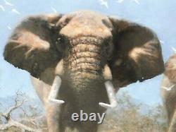 Juste Des Éléphants Par David Shepherd Signé Édition Limitée Très Rare